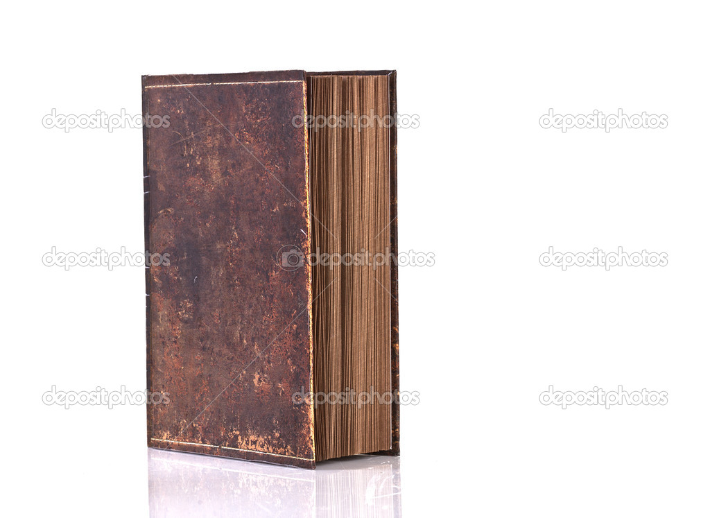 Blank, no title, old book,  — Stock Photo #6290862