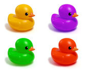Four colored ducks — Stock Photo