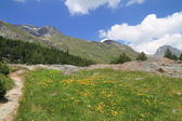 Trekking in Engadina — Foto Stock