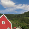 Norway — Stock Photo #6384413