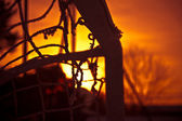 Soccer & sunset — Stock Photo