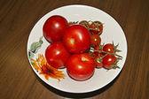Tomates — Fotografia Stock