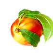 Fragrant ripe peach isolated on a white background — Stock Photo