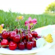 Ripe cherries on a  picnic — Stock Photo