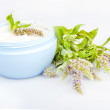 Stock Photo: Humidifying cream and melissflowers