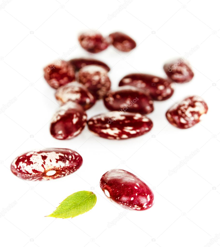 Bean seeds isolated on a white background — Stock Photo #6631920