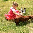 Girl playing with dog — Stock Photo #6300366