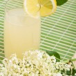 Elderberry flower flavored summer refreshment — Stock Photo