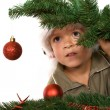 Постер, плакат: Boy with santa hat hiding