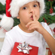 The magical secret of christmas — Stock Photo #6409391