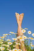 Happy sunny legs with flowers — Stock Photo