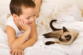 Little boy enjoying the company of his kitten — Stock Photo