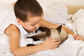 Little boy caressing his kitten in bed — Stok fotoğraf