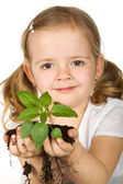 Little girl holding young plant — Stock Photo