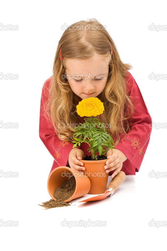 Little girl smelling her potted flower - isolated — Stock Photo #6409824