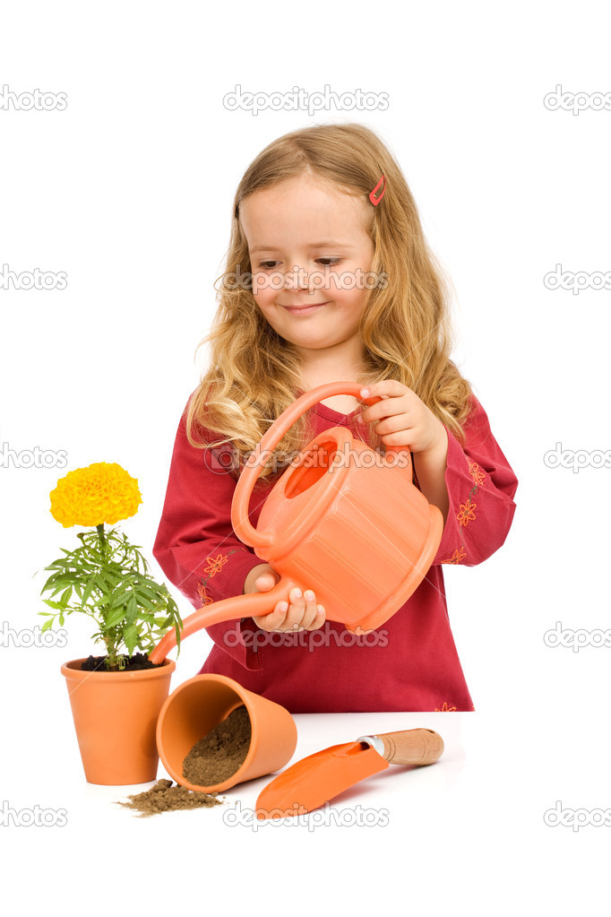 Little girl watering her potted flower - isolated  Stock Photo #6409826