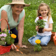 Grandmother teaching little girl gardening — Stock Photo