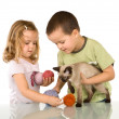 Kids playing with their cat — Stock Photo #6430132