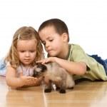Kids with their kitten on the floor — Stock Photo #6430134