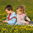 Kids with laptops on the flower field — Stock Photo #6430169