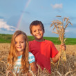 Kids in wheat field at harvest time - Stock Photo
