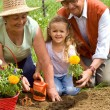 Grandparents teaching little girl the ways of gardening — Stock Photo