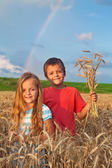 Kids in wheat field at harvest time — Stock Photo