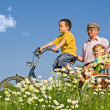 Ride with grandparents - Stock Photo