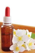 Jasmine oil — Stock Photo