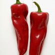 Chili peppers, pepper acute, bitter pepper — Stock Photo