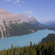 Peyto Lake — Foto de stock #6339457
