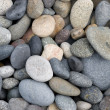 Stock Photo: Shoreline pebbles.