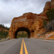 Rock tunnel over highway — Stock Photo #6349296