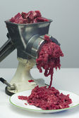 Meat grinder — Stock Photo