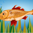 Fish on a background of grass — Stock Vector