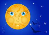 Femme de la lune dans le ciel de nuit avec les étoiles et les chauves-souris — Vecteur
