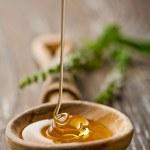 Wild honey — Stock Photo