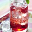 Delicious pomegranate cocktail, shallow dof — Stock Photo