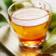 Rooibos tea — Stock Photo #6362789