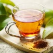 Rooibos tea — Stock Photo #6362792