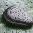 Wet stone on leaf — Stock Photo