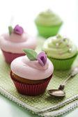 Pastel cupcakes — Stock Photo