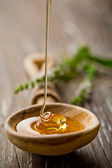 Wild honey — Stock Photo