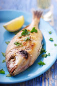 Fresh fish straight from the grill, in greek taverna setting — Stock Photo