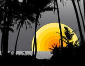 Palm trees on the beach with the sun. Vector — Stock Vector