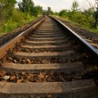 Rails in the nature — Stock Photo