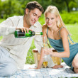 Royalty-Free Stock Photo: Young happy couple celebrating with champagne at picnic