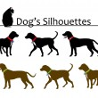 Set of Dog's Silhouettes — Stock Vector