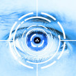 Photo: Technology scman's eye for security or identification