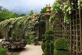 Paris, Versailles — Stock Photo